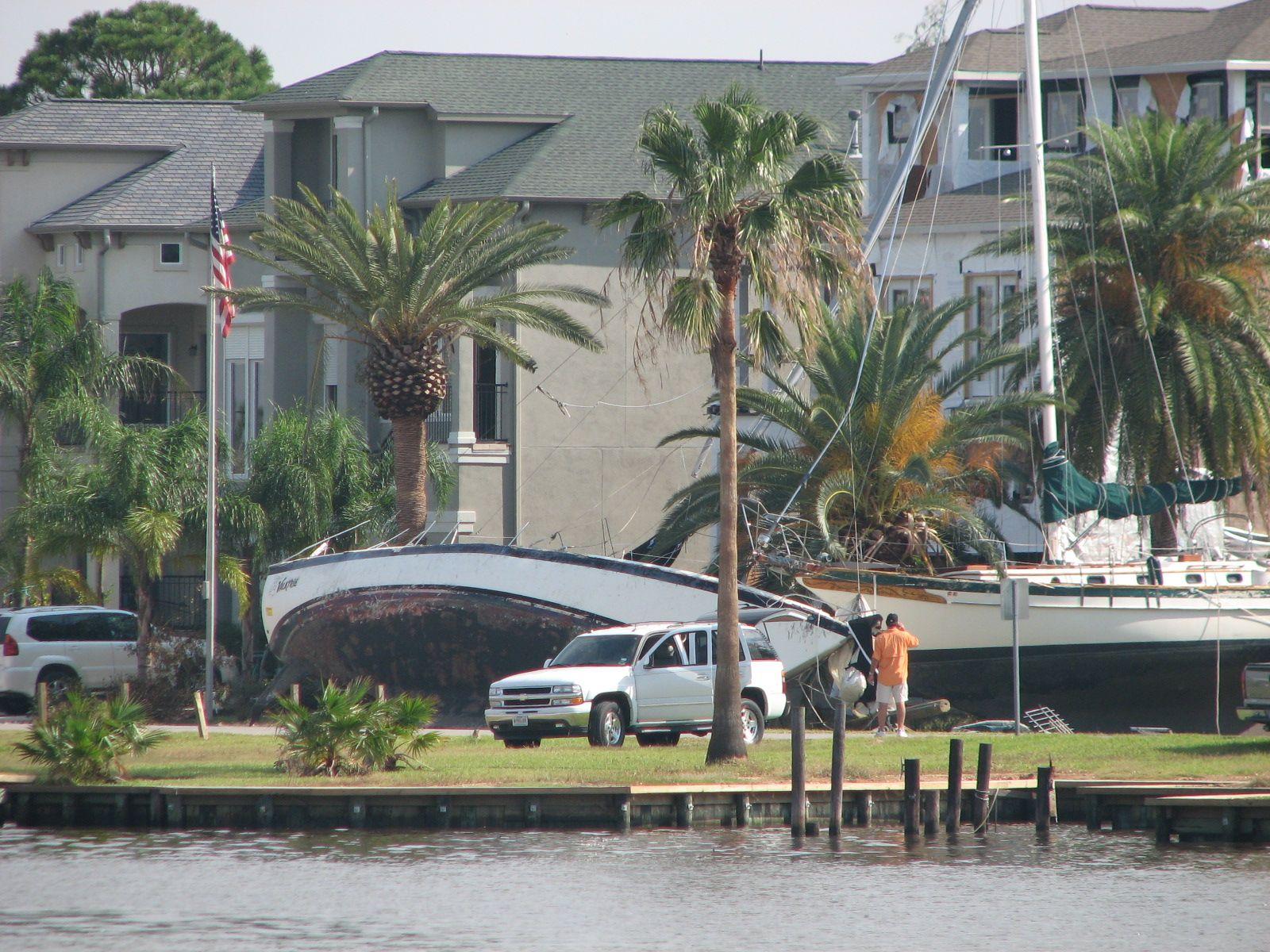 Boat dealers in southeast texas yorkies